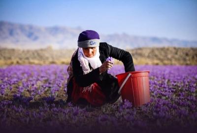 Circuit Du Safran Et Des Épines-Vinettes Iran