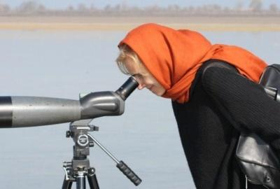 Circuit d'observation des oiseaux et de nature en Iran