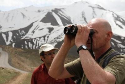 Voyage Ornithologie Iran-De Forêts Hyrcaniennes Aux Déserts Centraux De L'Iran