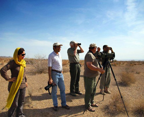 Iran Birdwatching and Nature tour Book on SURFIRAN