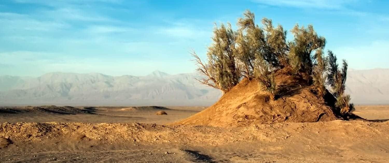 Nebka is the vessel of desert created by wind.
