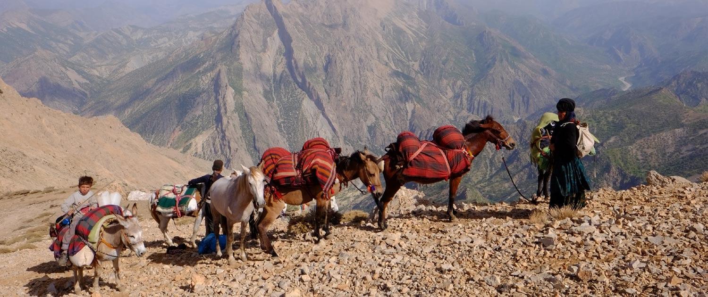 Iran Nomad Tours