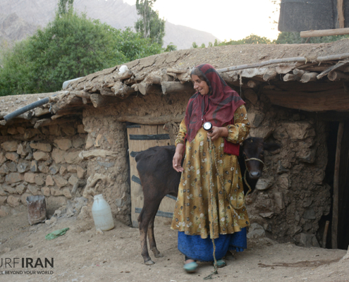 Travel with Bakhtiari Tribes - Discovering Bakhtiari Culture