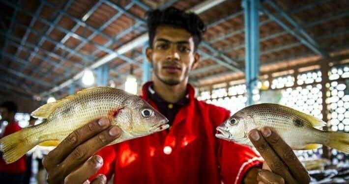Bandar Abbas Fish Market in Southern Iran